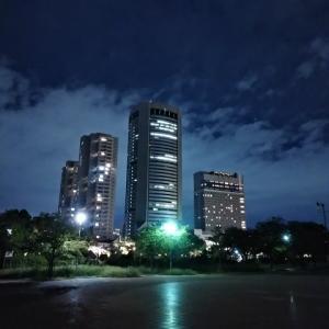 桜ノ宮の夜景