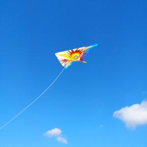長居公園で凧揚げ