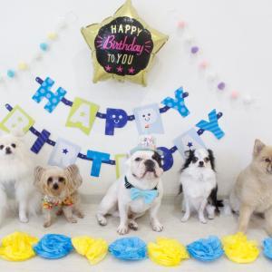 ♡はちくん HAPPY BIRTHDAY♡