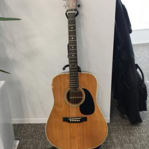 Yamakiのギター