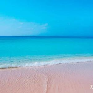 夏らしく🎵   波照間ブルー