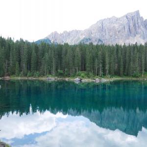 ドロミティの宝石・カレッツァ湖周辺を襲った嵐の痕