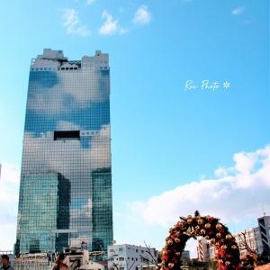 *今日の大阪は真夏日
