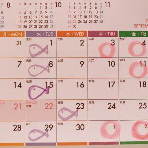 【9月のスケジュールをお知らせいたします】7月31日で6・7月限定キャンペーンは終了いたします