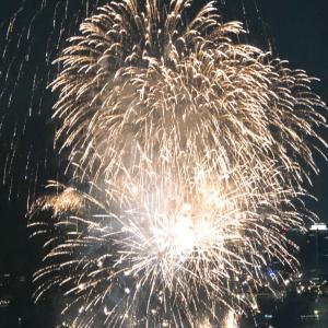 【お台場の花火大会】花火とサザエで夏パーティー