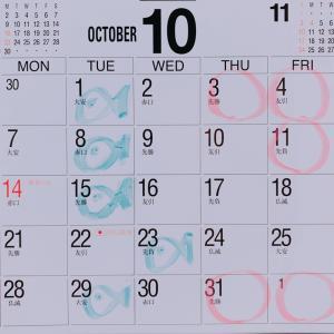 【10月のご予約を受け付け開始致します】大阪院のご予約はお早目にご連絡くださいませ