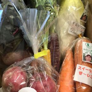 今日のお野菜セット