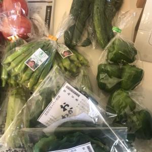 夏野菜でビタミンチャージ!?