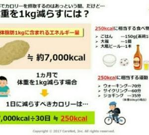 キャベツのダイエット0日目 #4(摂取カロリー〜標準体重〜食事)