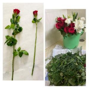アンロック4-20 赤い薔薇と白百合と