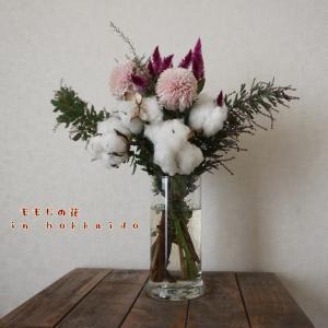 北海道のももじの花