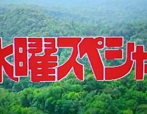 【探検シリーズ】秘境山口の奥地に、巨大不動明王は実在した!