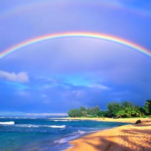 来年の夏はハワイ