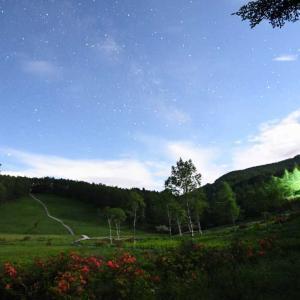 入笠山 レンゲツツジと天の川