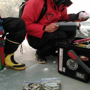風来坊の桧原湖ワカサギ釣り!あれまぁ、釣ったこと釣ったことぉ♪