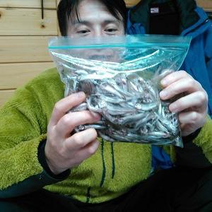 風来坊の桧原湖ワカサギ釣り!ご利用頂きありがとうございましたぁ♪