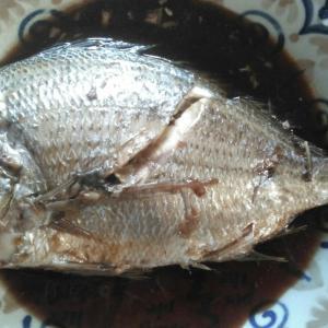 平鯛(ヘダイ)の 煮付け