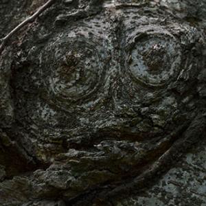 動物樹「メガネザル」