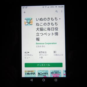 にゃ~にゃ~の日(2020年2月)=本日休業