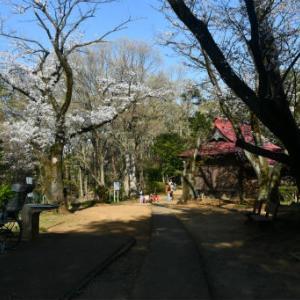今日は荒幡富士散歩2