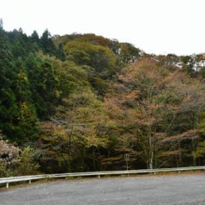 空倶楽部・伊豆ヶ岳登山の空