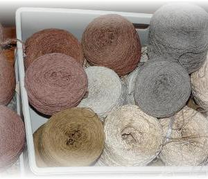 ◆ 服地を織ろうかと……◆