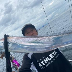 9月13日太刀魚seikou便