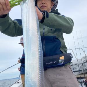 9月26日 太刀魚 晴光丸便