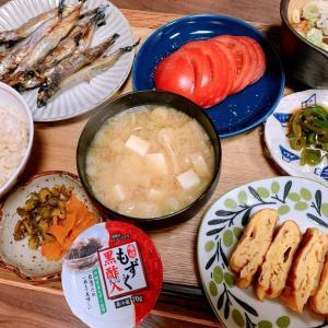 地味飯(冷蔵庫と冷凍庫を年末前に空にしたい)