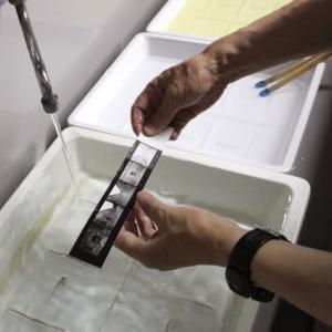 銀塩写真講座 Step1 / 7日目 プリント実習3:コンタクトプリント