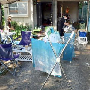創作実験クラブ / 5日目 葉摘みからの藍の生葉染め