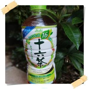 アサヒ飲料 アサヒ 十六茶 当たるキャンペーン開催中 ( *´艸`)