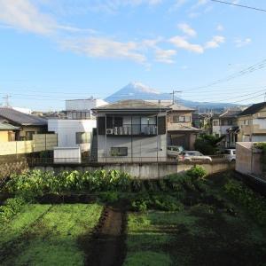 秋が早足で近づいてきた  富士山に雪が積もり、ヒガンバナも間もなく満開!