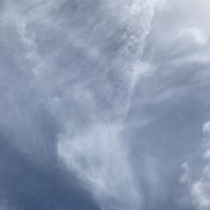 ペッパーくんと秋の空。