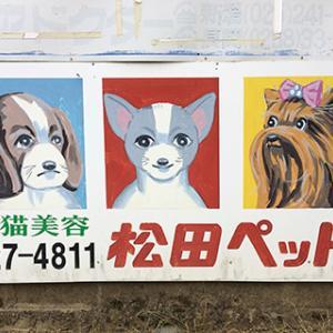 松田ペットの看板