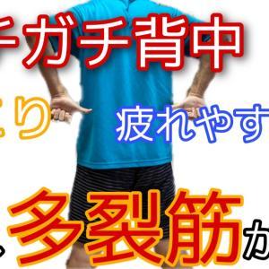 ガチガチ背中に疲れない体作りに!〜多裂筋リリースでシャキッとキレイに姿勢改善〜