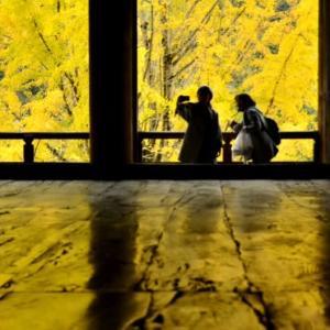 秋 の 宮 島 散 策