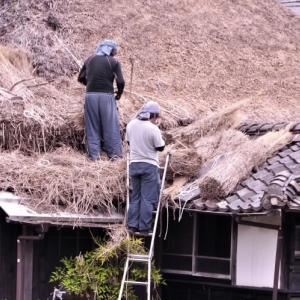 茅 葺 屋 根 の ふ き 替 え