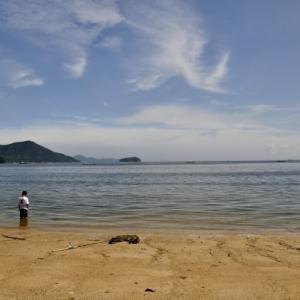 大 野 浦 海 岸 ( 鳴 川 海 岸 )