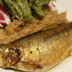 【今週のおすすめ料理】長野県産 子持ち鮎のコンフィ