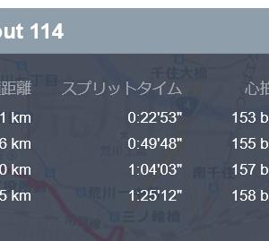 2019年 ランニング記録 25 隅田川にカニ発生