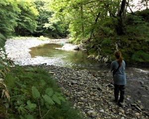久しぶりに娘と日高の小渓流へ2(北海道)