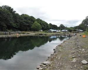 つりぼりあかしさん(北海道上川町)を途中退場し、比布町の釣り堀へ