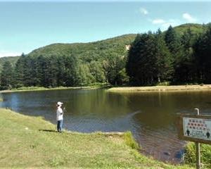 二日続けて赤井川村の管釣りへ(フライで時速15尾、Tomo PlayPark=トモ・プレイパーク、北海道)