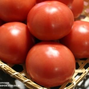 【保存版!静岡産トマトのお話 とトマトの追熟と冷凍保存について。(静岡クッキングアンバサダー)】