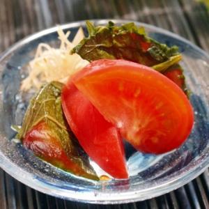 【ぎふベジ】トマト編③ ~ クールダウンレシピ、トマトの白だし浸し。