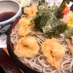 ごまそば 八雲 新札幌サンピアザ店 / お気に入りの海老おろし蕎麦