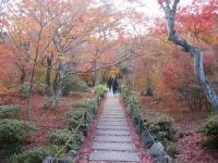 紅葉を観に京都一泊旅行 1.