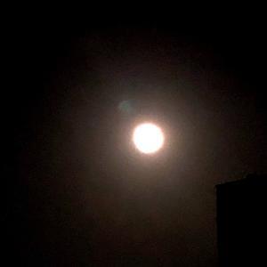 月に癒されて 昨夜は幸せいっぱいでした