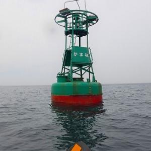 三崎港の浮標